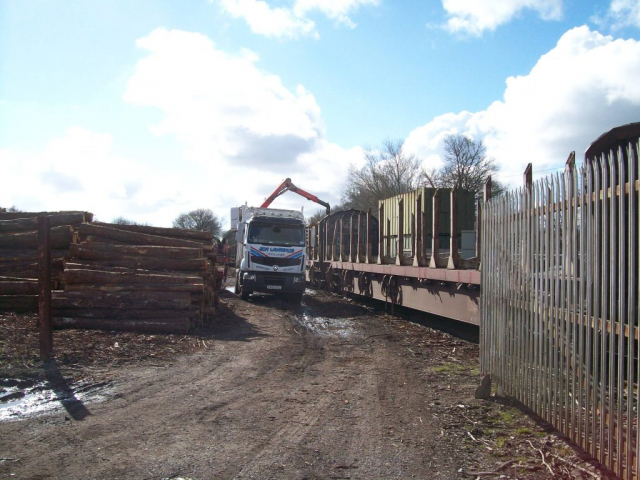 Logs being loaded at Teignbridge.