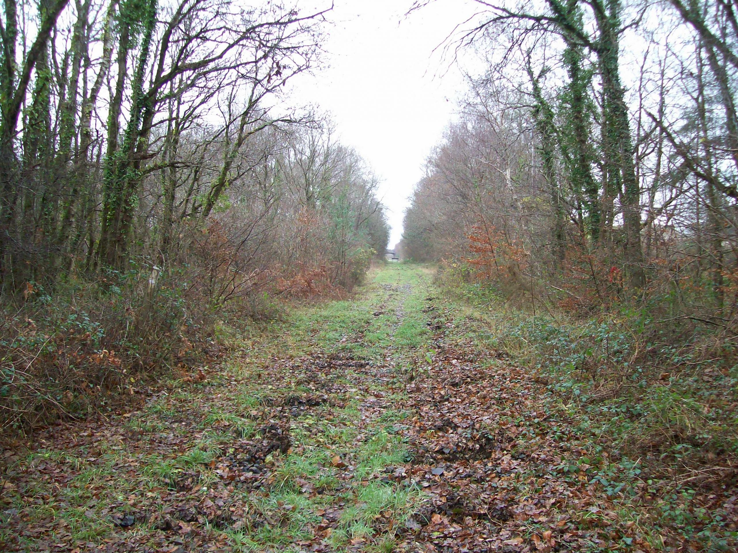 Moretonhampstead Branch