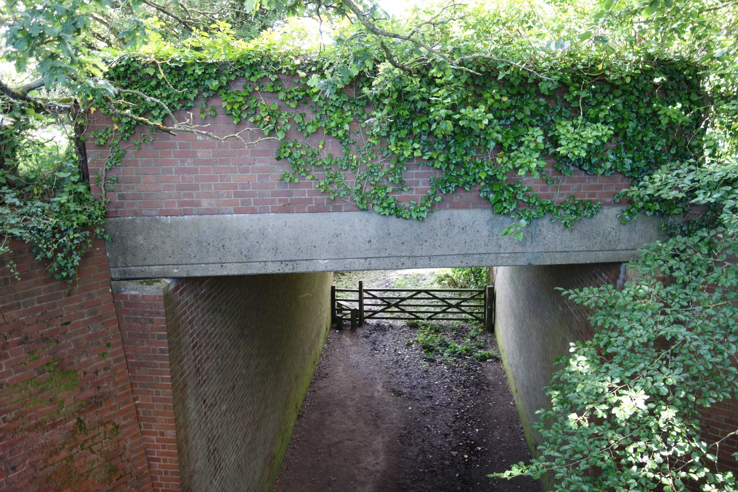 A30 bridge over Sidmouth Branch